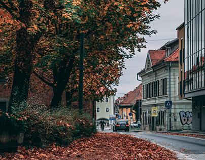 Maribor - COVID-19 Edition