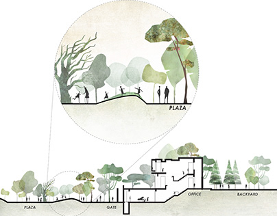 Landscape Architecture Section in Photoshop