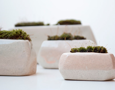 VELOUR_a home for moss