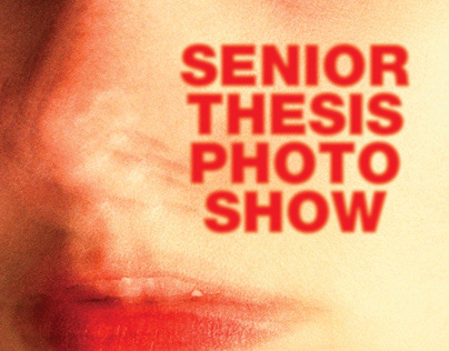 THESIS PHOTO SHOW POSTERS - SPRING