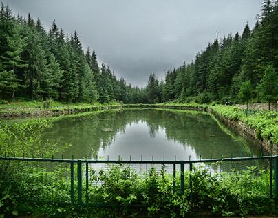 shimla lake