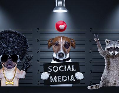 Social Media V6