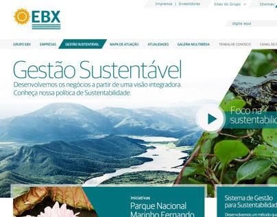 EBX - Gestão Sustentável