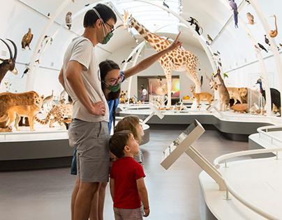 Museum of Natural Sciences of Belgium - Living Planet