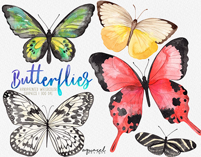Watercolor Butterfly clipart, Butterfly PNG, wreath, pn