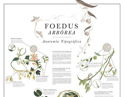 Foedus Arbórea