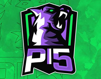 Pi5 E-sports General Designs