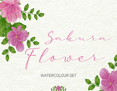 Sakura Flower -Watercolours