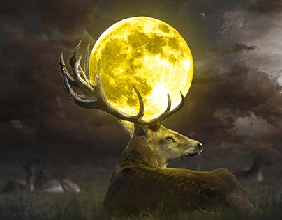 Moon and deer photo manipulation