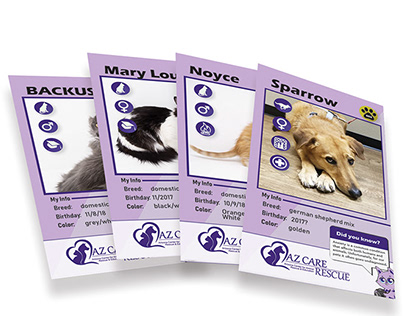 Pet Story Cards