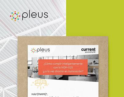 Pleus | Email Marketing