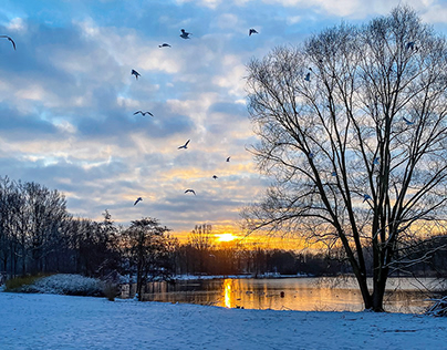 Wintery sunrise ...