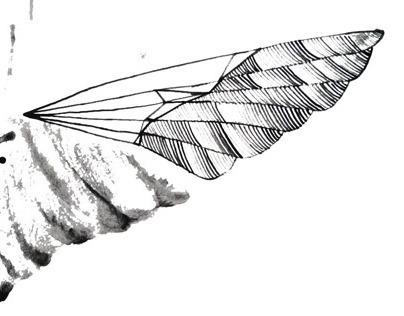 Conceptual illustrations: ink