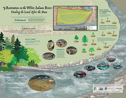 Interpretive Signs - White Salmon River Restoration