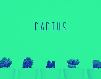 Cactus Typeface | Free Font