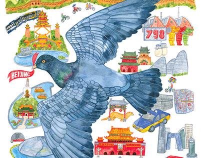Beijing Pigeon Map