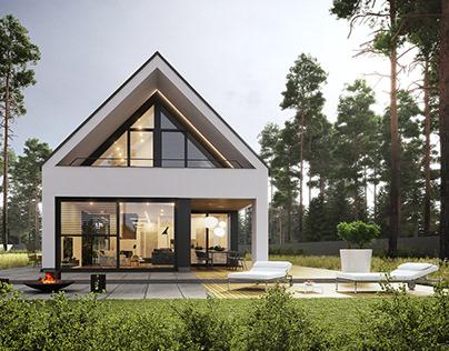 Modern single-family house 13