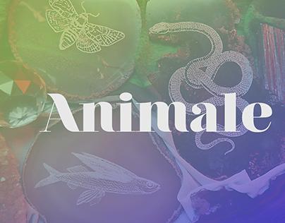 @animale
