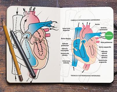 Ilustrações científicas para tese de doutorado