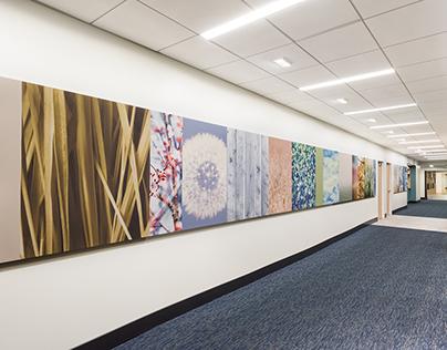 Griffin Hospital - East Lobby - Photo Mural