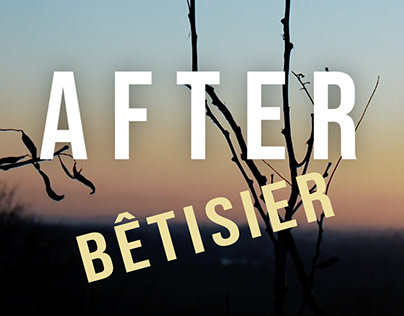 Bêtisier After Life