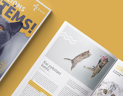 Cats magazine design