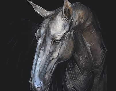 Horses on light
