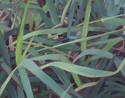Cedar Lake Paintings