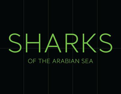 Sharks of the Arabian Sea | Infographic