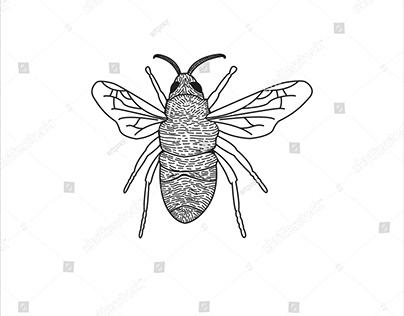 honey bee logo vector line art