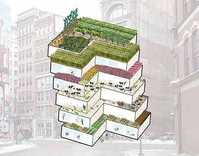 'Whole' Foods:  Urban Farming