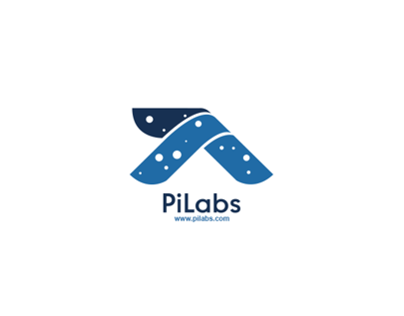 Pi Labs Logo Process