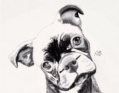 Ernie-the Bug~Featured on Adobe Photoshop Sketch~31-Dec