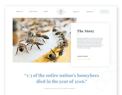 Save the Bees Website