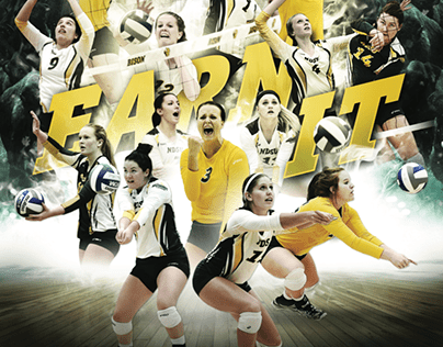 2016-17 Volleyball Posters