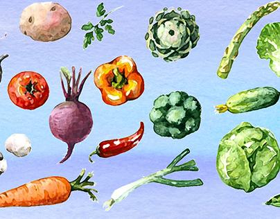 Healthy Recipes Book