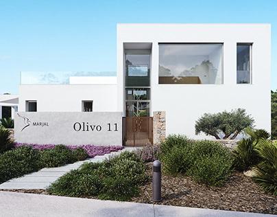 OLIVO 11