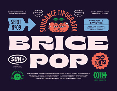 Brice Font Family