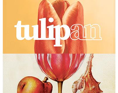 Tulip Exhibition
