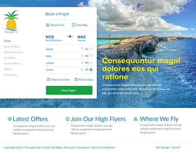 Web Design Project - Pineapple Air Limited, Bahamas