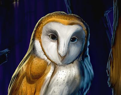 """""""Bird Life"""" book cover"""