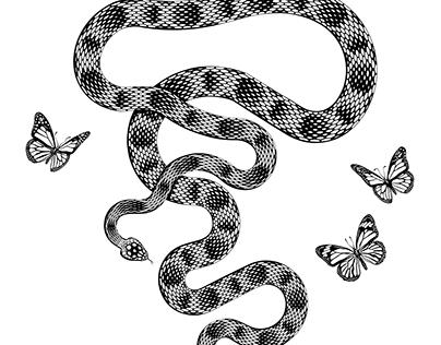 Rattlesnake & Butterflies