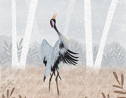 Żuraw/ crane