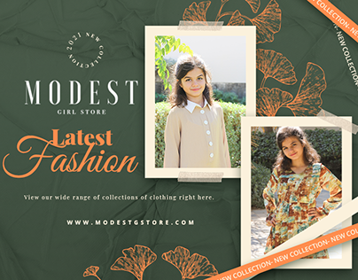 Modest - Web Design & Development