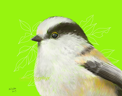 Long-tailed Tit's head - Study(With subsequent results)