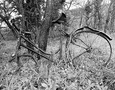 Storia di una Bicicletta