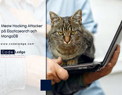 Meow Hacking Attacker på Elasticsearch och MongoDB