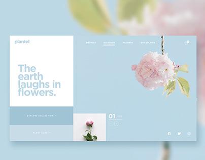 Plantel website concept