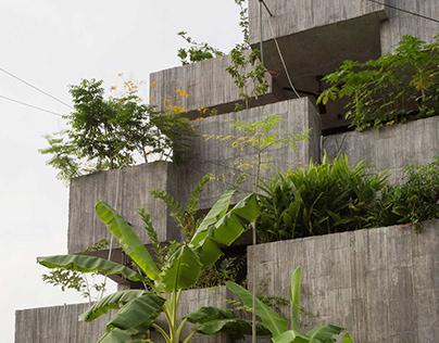 Planter Box House designed by Formzero