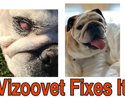 Vizoovet Protect